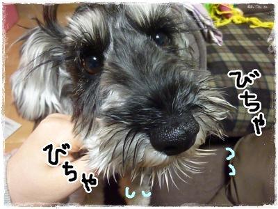 3_1+004_convert_20120301195324.jpg
