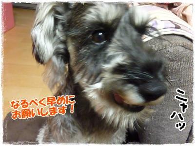 3_1+010_convert_20120301195420.jpg