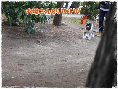 3_11+031_convert_20120311230904.jpg