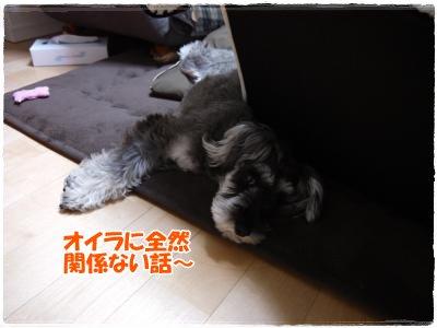 3_16+001_convert_20120320005450.jpg