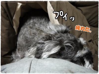 3_16+009_convert_20120316193624.jpg