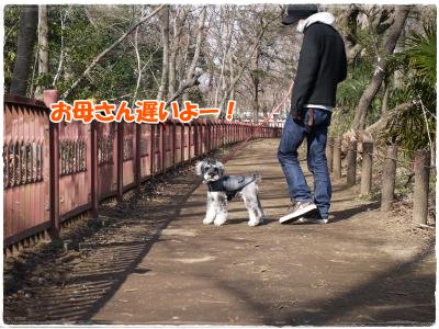 3_20+014_convert_20120320230404.jpg