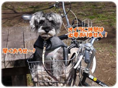 3_20+030_convert_20120321210706.jpg