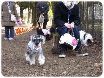3_20+093_convert_20120321212508.jpg