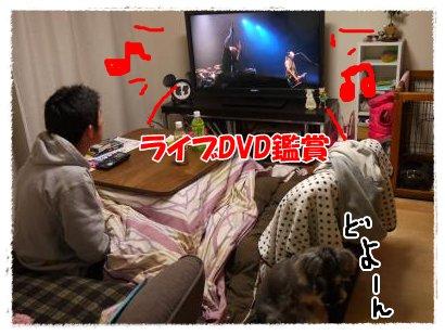3_24+007_convert_20120324224100.jpg