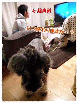 3_24+014_convert_20120324224329.jpg