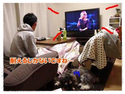 3_24+016_convert_20120324224356.jpg