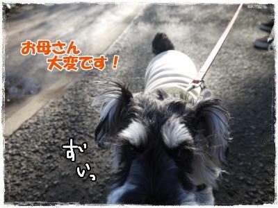 3_25+004_convert_20120325192843.jpg