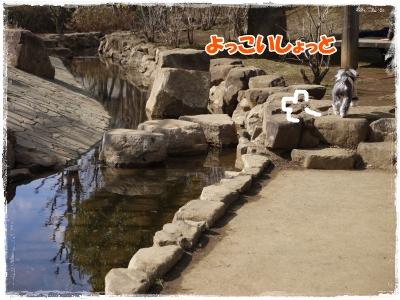 3_25+037_convert_20120326211008.jpg
