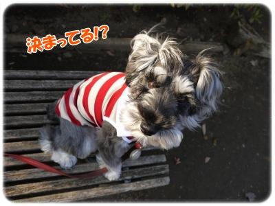3_27+005_convert_20120327174938.jpg