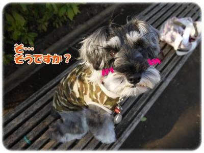 3_27+009_convert_20120327175105.jpg