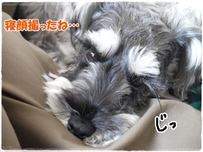 3_29+008_convert_20120329180807.jpg