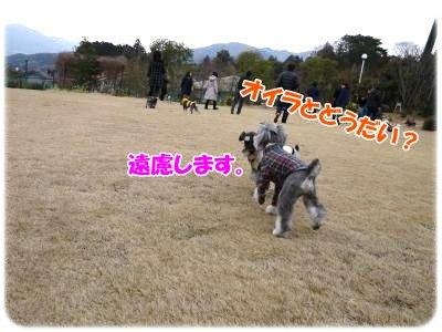 3_4+018_convert_20120305100240.jpg