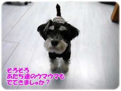 3_4+087_convert_20120305101805.jpg