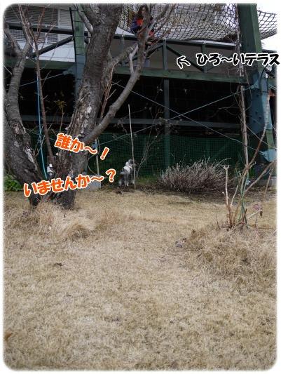 3_4+126_convert_20120305102122.jpg