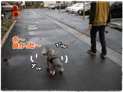 4_1+017_convert_20120401230105.jpg