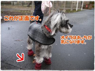 4_1+023_convert_20120401230215.jpg