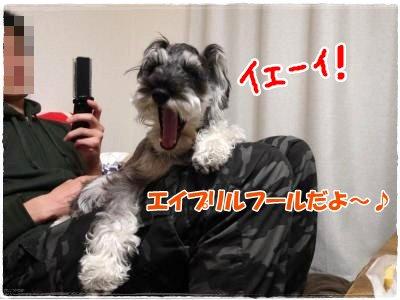 4_1+040_convert_20120401230809.jpg