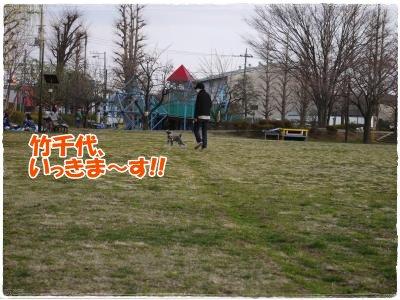 4_1+048_convert_20120402175937.jpg