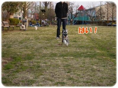 4_1+059_convert_20120402181101.jpg