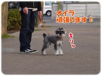 4_1+067_convert_20120402181604.jpg
