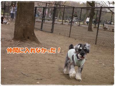 4_10+030_convert_20120410183003.jpg