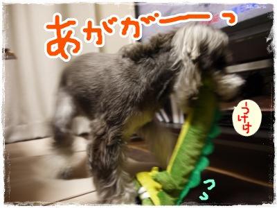 4_15+039_convert_20120415221007.jpg