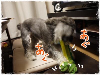 4_15+042_convert_20120416183408.jpg