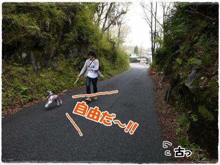 4_23+004_convert_20120423103352.jpg