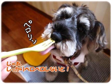 4_23+018_convert_20120423104049.jpg