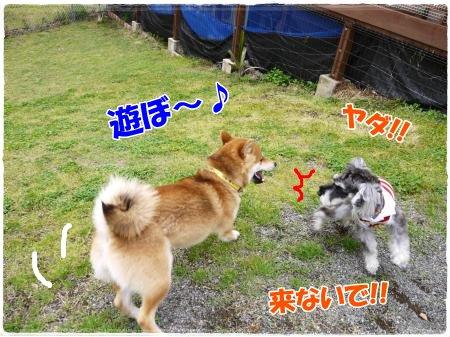 4_23+021_convert_20120423104214.jpg