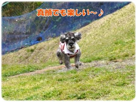 4_23+046_convert_20120423104904.jpg