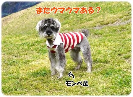4_23+052_convert_20120423105050.jpg