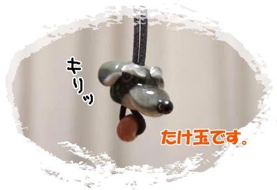 4_23+335_convert_20120425101254.jpg
