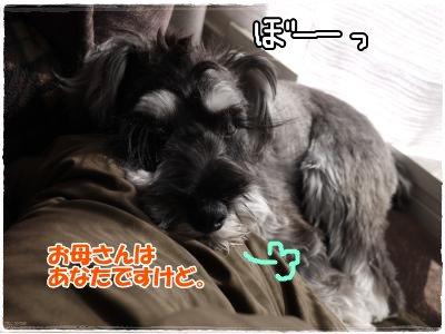 4_4+007_convert_20120405160412.jpg