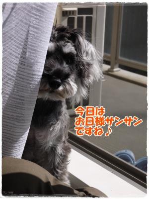 4_4+016_convert_20120404163517.jpg