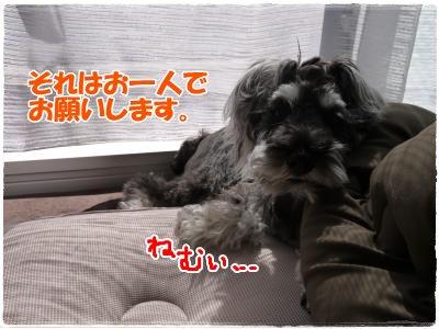 4_4+018_convert_20120404163551.jpg