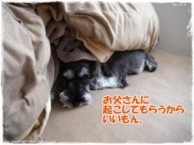 4_6+006_convert_20120406183615.jpg
