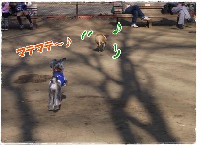 4_7+046_convert_20120407184941.jpg
