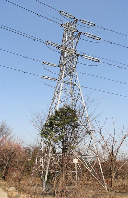武蔵赤坂線15号鉄塔