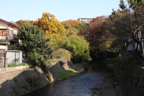 柳瀬川(東京都東村山市)