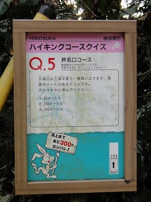 v-DSC01193.jpg