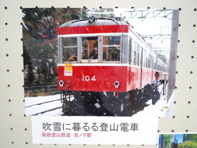 CA3J0241_20141103200720df6.jpg