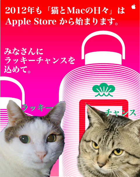 AppleLuckyBag2012START2.png