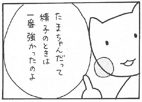 ねこ夫婦まんが たまともんちゃん-syussei6