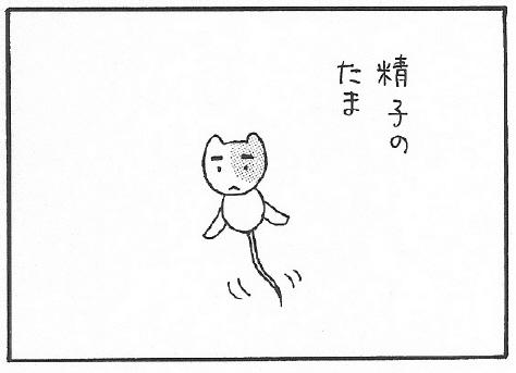 ねこ夫婦まんが たまともんちゃん-syussei9