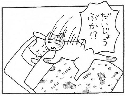 ねこ夫婦まんが たまともんちゃん-daijyoubu6