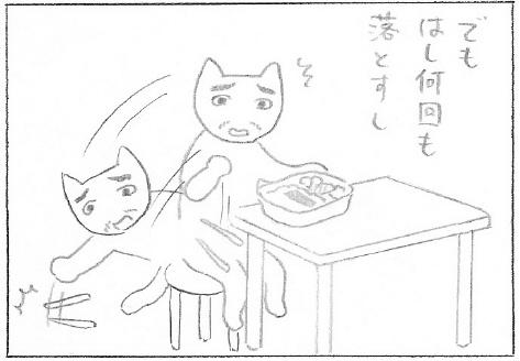 ねこ夫婦まんが たまともんちゃん-miya6