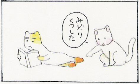 猫まんが たまともんちゃん-kutsusita3
