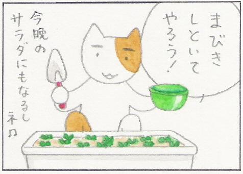猫まんが たまともんちゃん-mabiki3